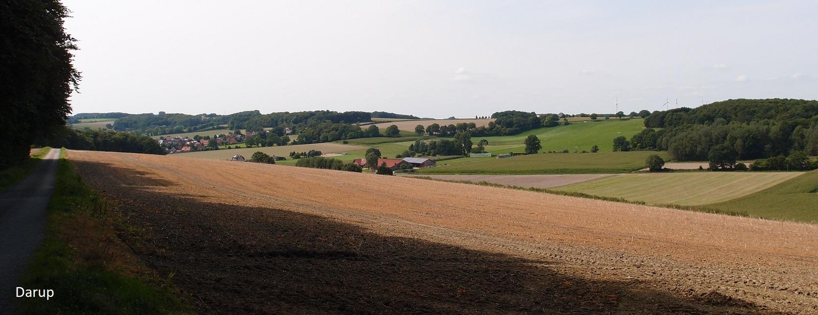 Daruper Höhen (Münsterland)