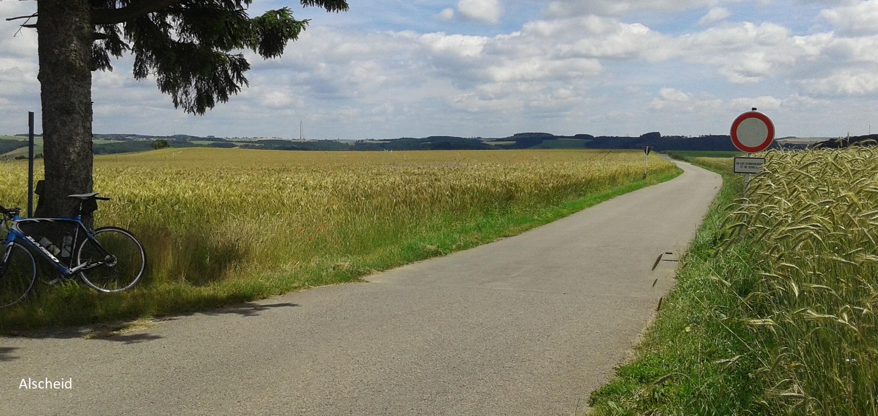 Alscheid (Luxemburg)